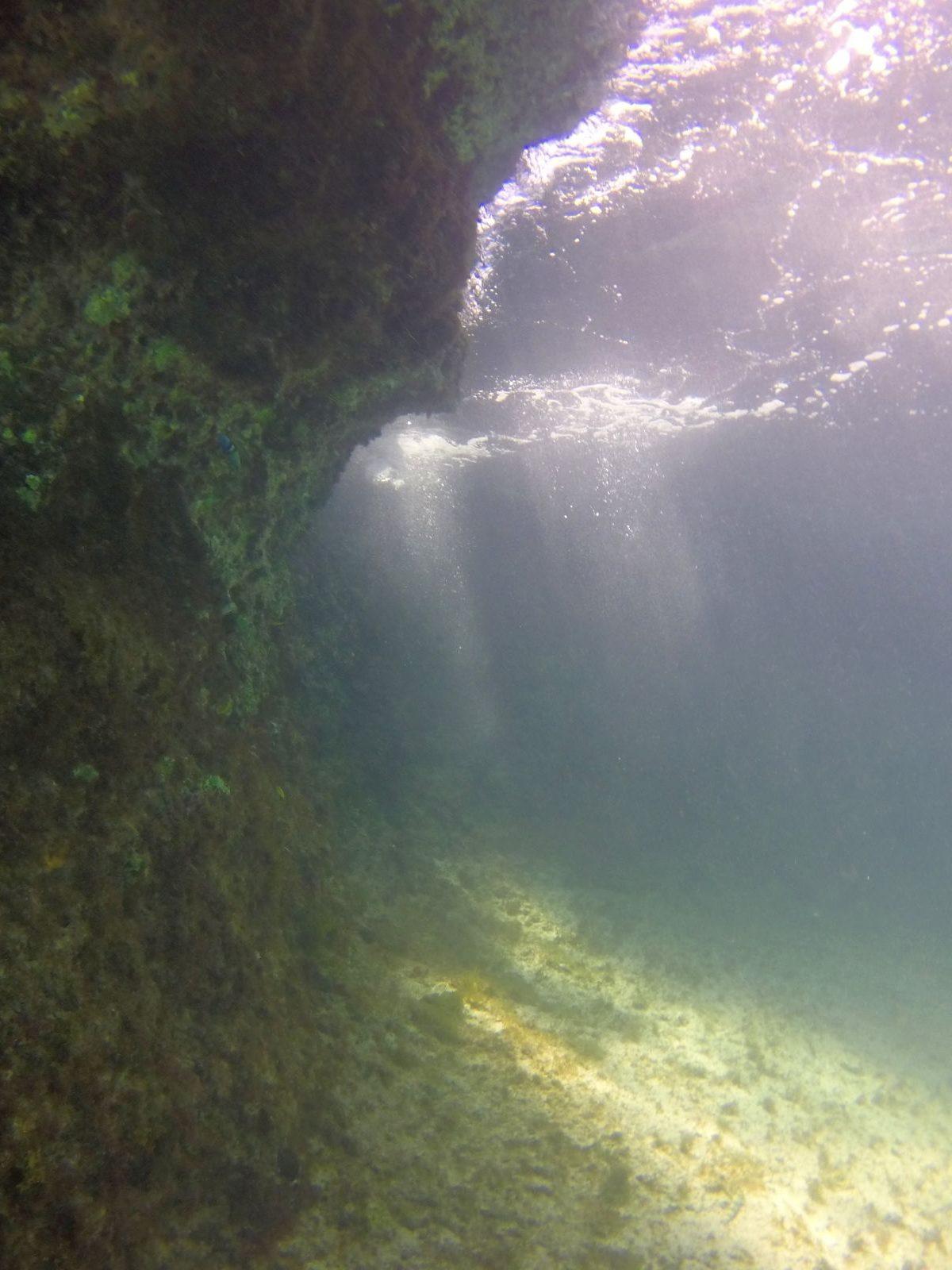 Under the shoreline