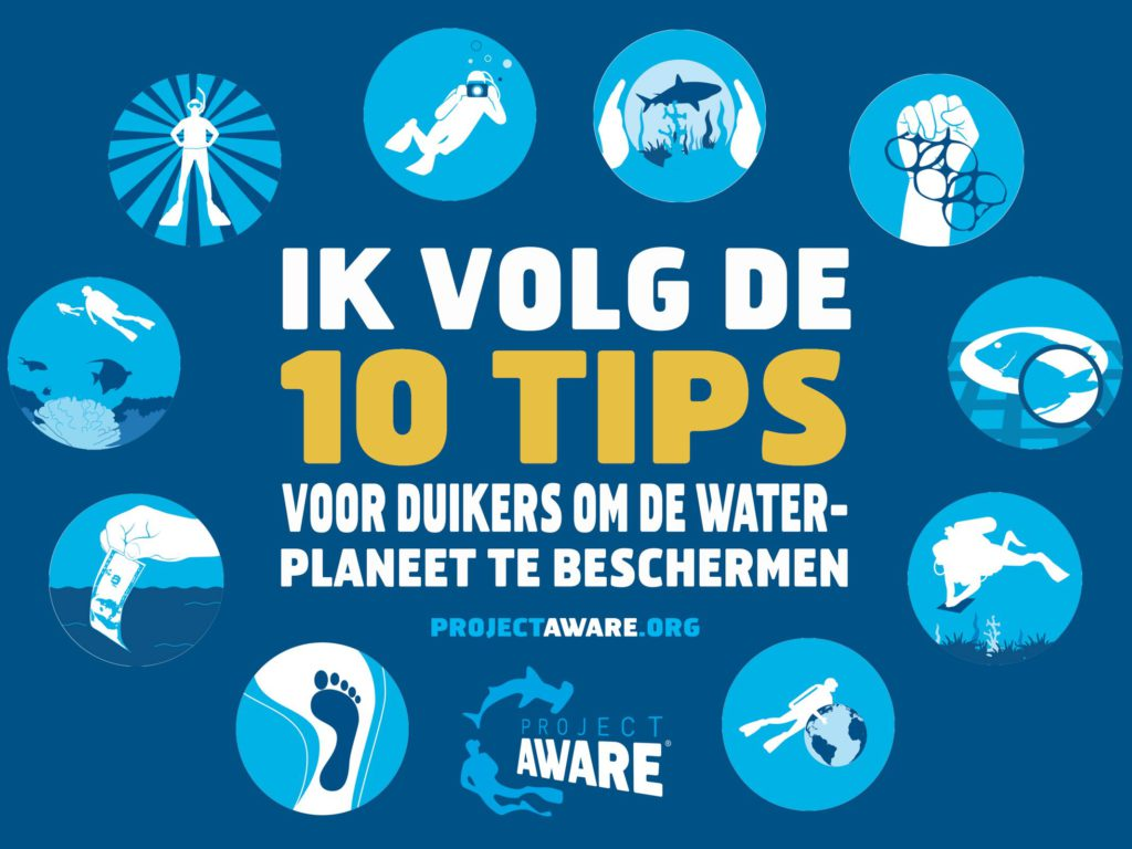 10 Tips verklaring
