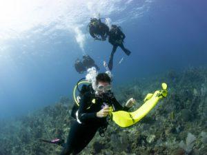 DSMB oplaten boven koralen
